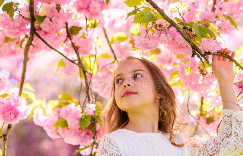 Girl on smiling face standing near sakura flowers, defocused. Sweet childhood concept. Girl with long hair outdoor. Cherry blossom on background. Cute child royalty free stock photo