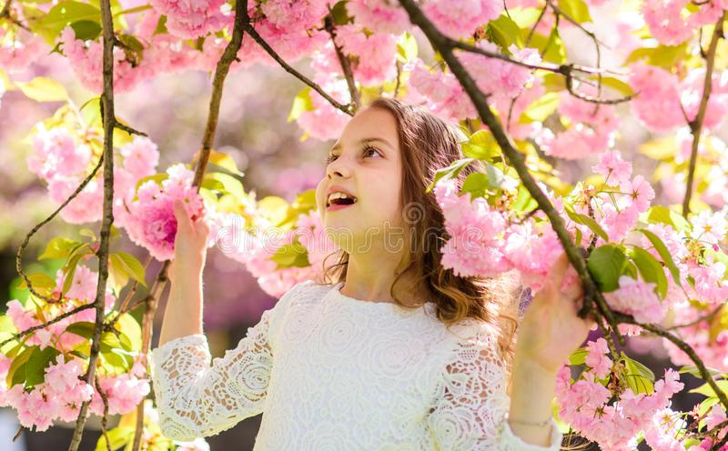 Girl on smiling face standing between sakura branches with flowers, defocused. Cute child enjoy nature on spring day. Spring flowers concept. Girl with long stock photo