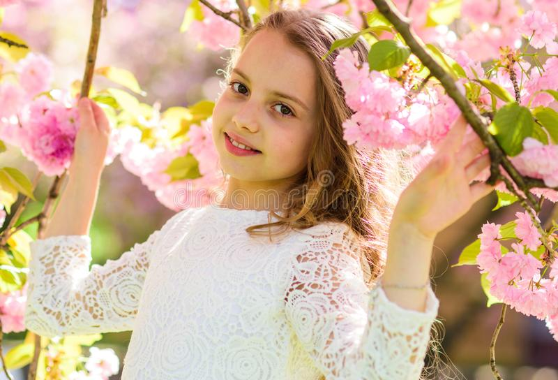 Girl on smiling face standing between sakura branches with flowers, defocused. Girl with long hair outdoor, cherry. Blossom on background. Spring flowers royalty free stock photos