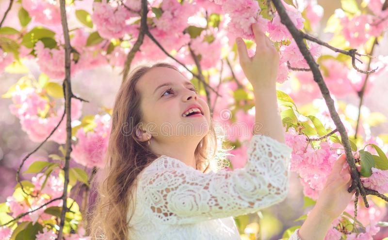 Girl on smiling face standing between sakura branches with flowers, defocused. Spring flowers concept. Cute child enjoy. Nature on spring day. Girl with long stock image