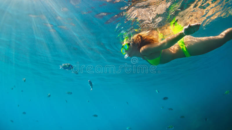 Girl in snorkeling mask dive underwater with coral reef fishes. Happy family - girl in snorkeling mask dive underwater with fishes school in coral reef sea pool stock images