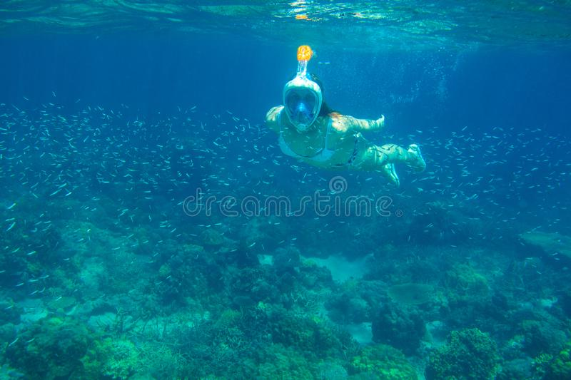 Girl in snorkeling mask underwater photo in blue sea. Diving in fish school. Woman in full-face snorkeling mask royalty free stock photography