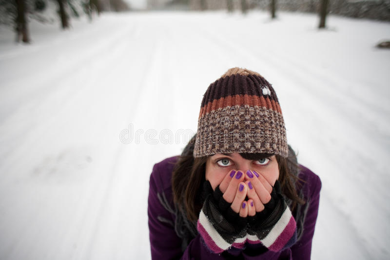 Download Girl in the snow stock photo. Image of beautiful, cold - 12237456