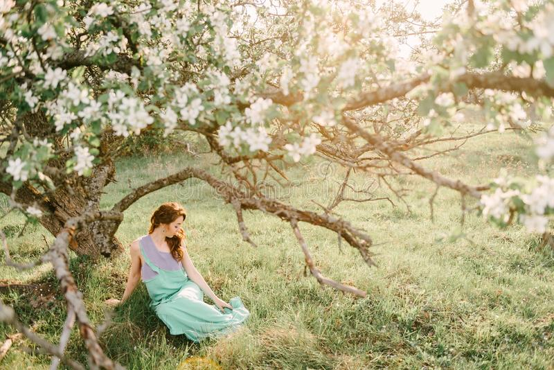 A girl in spring in a flowering apple orchard sits under the crown of an apple tree. A girl in a green and purple dress, with long hair in a spring apple garden royalty free stock images