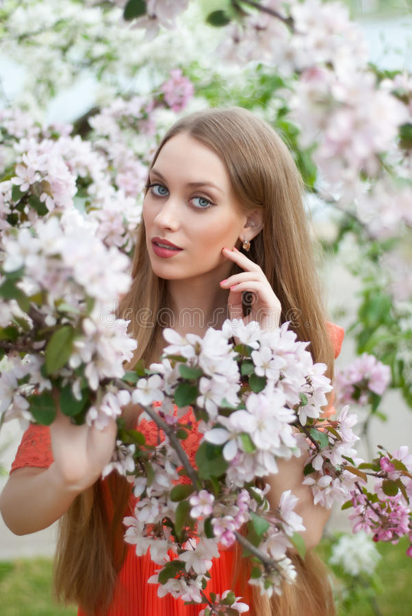 Girl in spring flowers stock photography