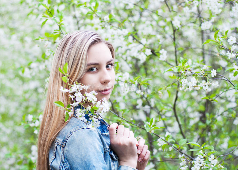 Girl in the spring garden. Beautiful girl in the spring cherry blossoming garden stock photo