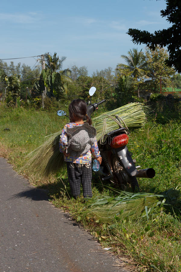 Girl standing by a motorbike overloaded with grass stock photos