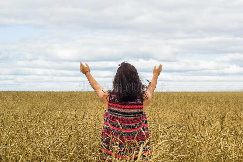 Girl standing on wheat field stock images