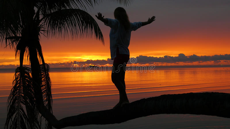 A girl stands on a palm tree on a background of red sunset on the seashore stock photo