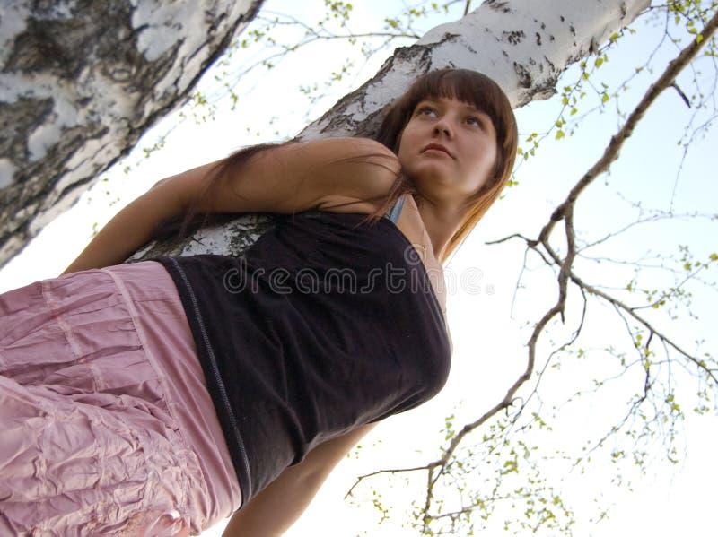 Girl stay near birch 2 royalty free stock image