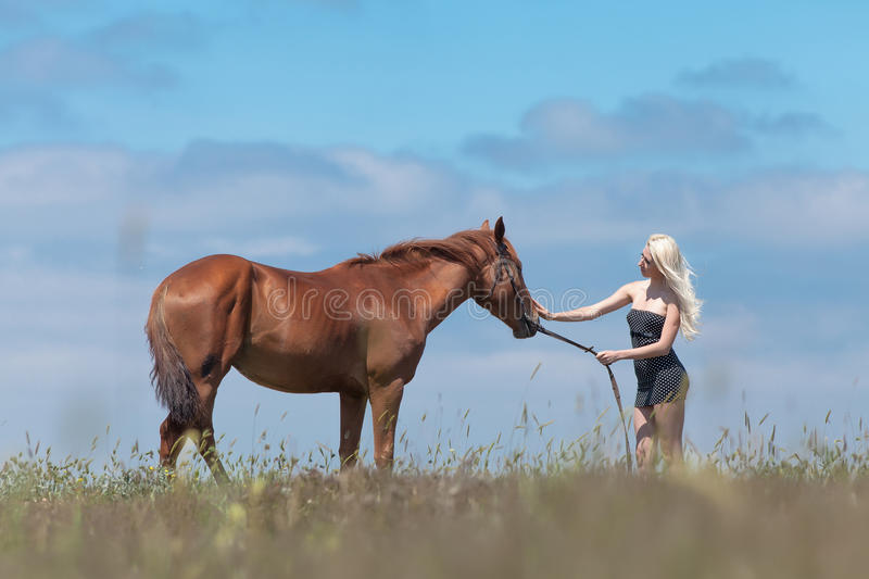 Girl stroking gelding. Blonde woman stroking gelding. Young blonde woman in polka-dot dress with brown horse stock photo