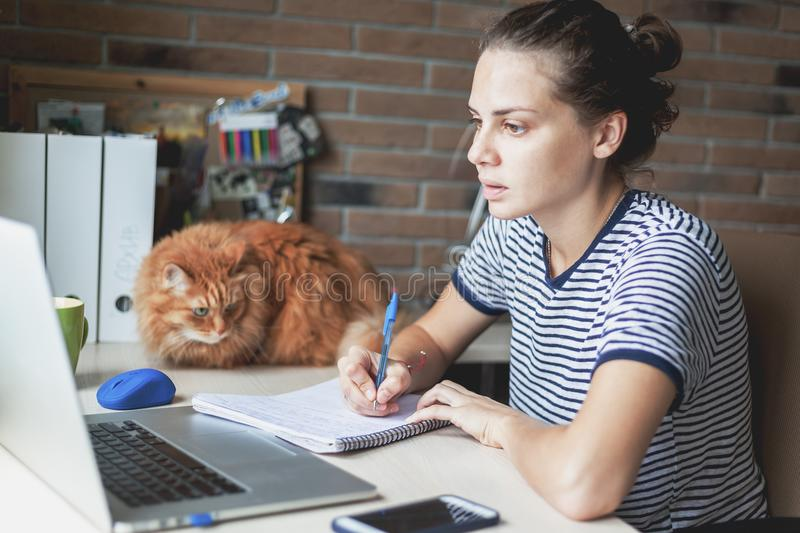Girl student freelancer working with laptop at home by the window, education and remote work, programmer, online business royalty free stock photos