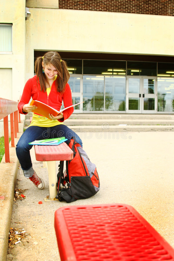 Girl studying on a bench stock image