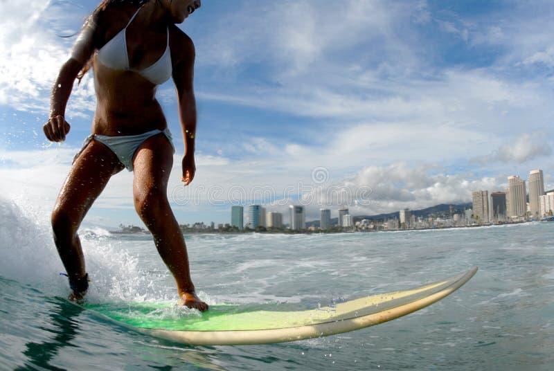 Girl Surfer royalty free stock image