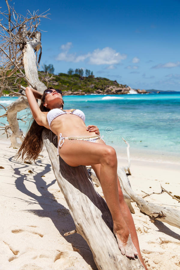 Girl in a swimsuit on the dry tree stock photo