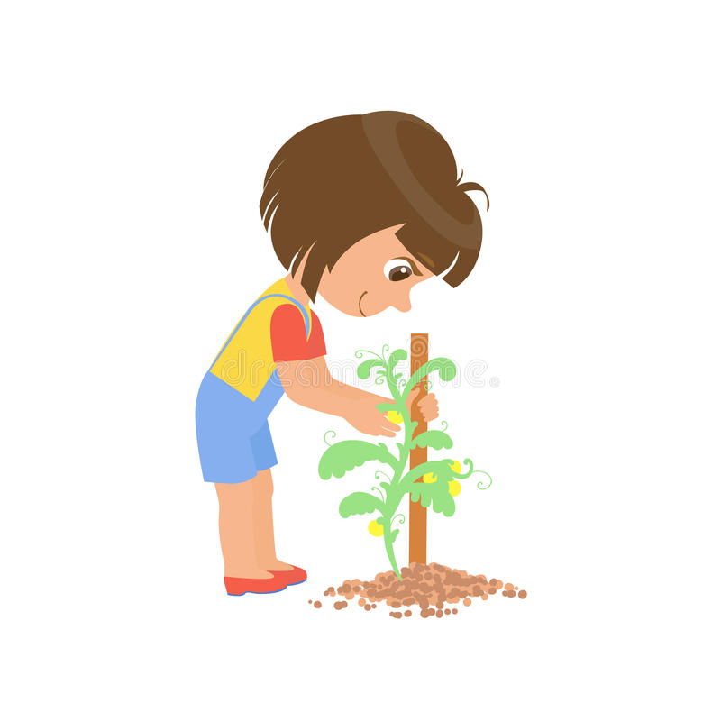 Girl Taking Care Of A Plant vector illustration