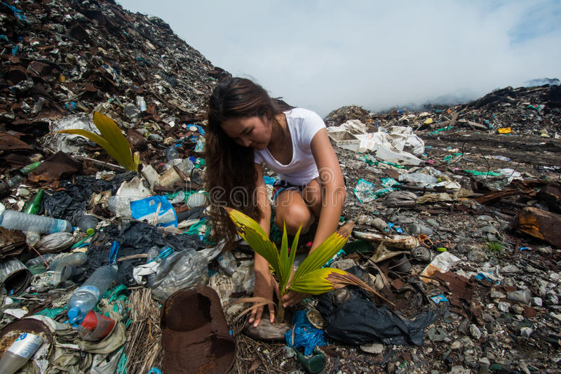 Girl taking care of plant on garbage dump royalty free stock images