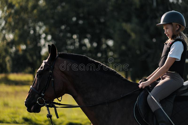 Girl teenager jockey sits on a brown horse in nature. stock photos