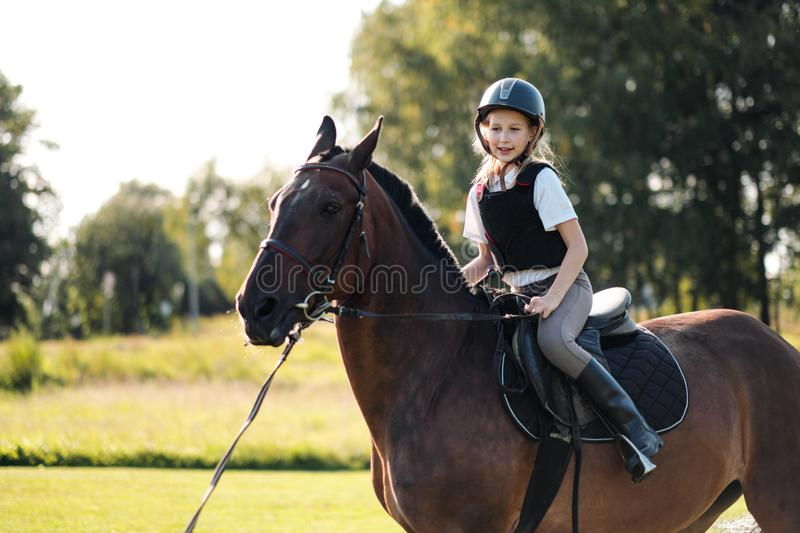 Girl teenager jockey sits on a brown horse in nature. Dressage horses, rider training stock photos