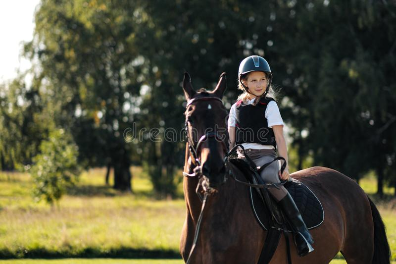 Girl teenager jockey sits on a brown horse in nature. Dressage horses, rider training royalty free stock photography