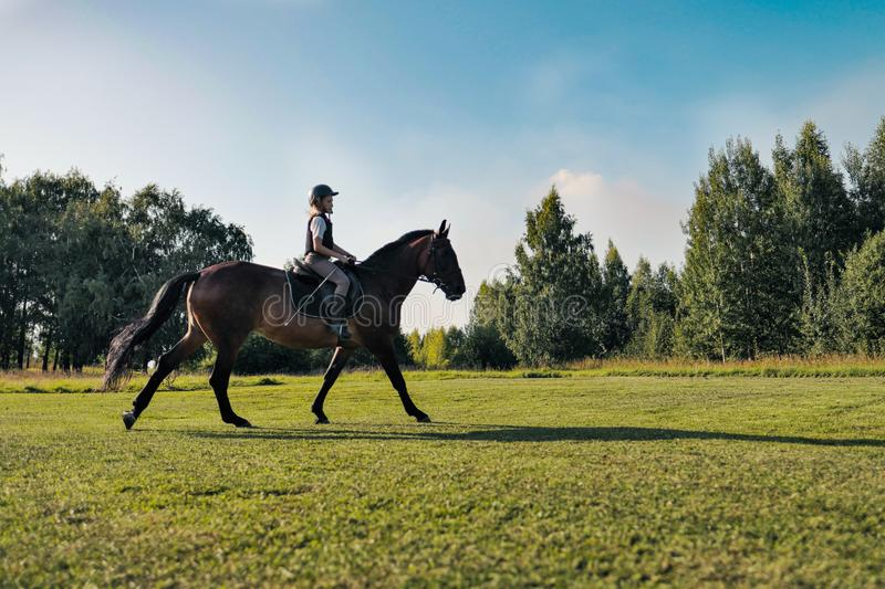 Girl teenager jockey trains on the field and at the hippodrome. royalty free stock photo