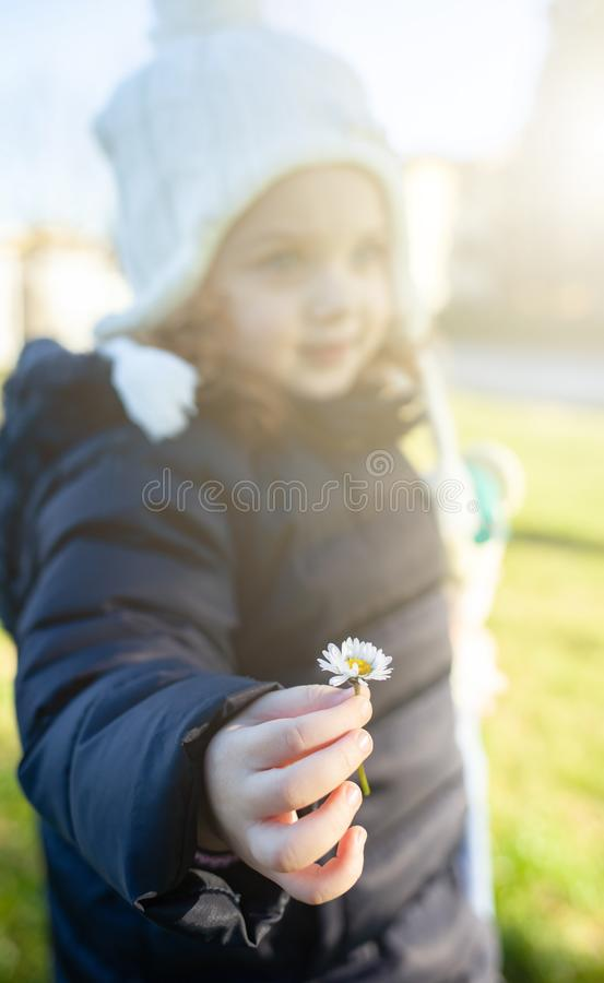 Girl toddler holding a daisy flower royalty free stock photos
