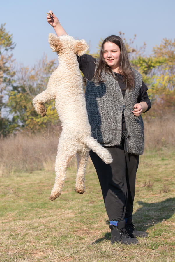 A girl trainer and a Jumping dog stock images