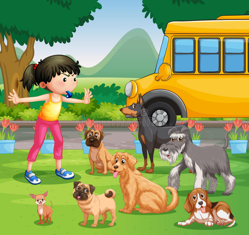 Girl training dogs in the park stock illustration