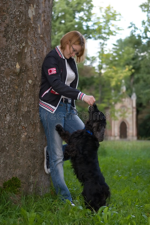 Download Girl training her dog stock image. Image of grass, connection - 3161021