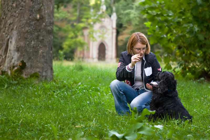 Girl training her dog royalty free stock images