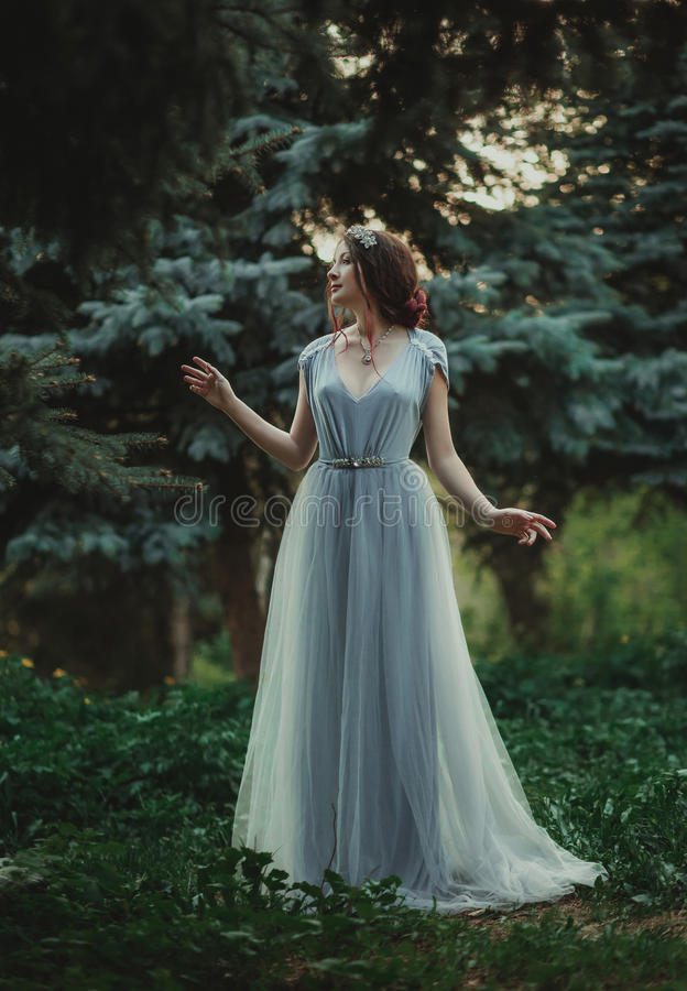 The girl in transparent dress royalty free stock photos