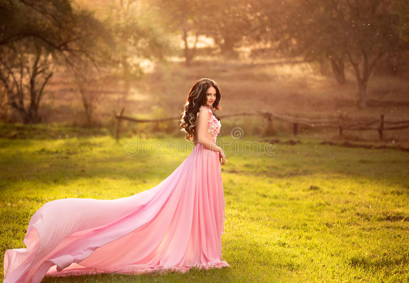 The girl in transparent pink dress stock images