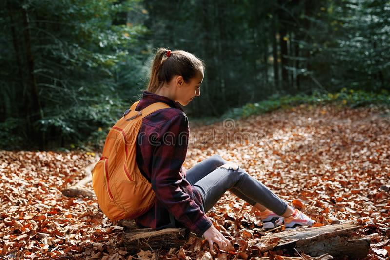 Girl traveler in red checkered shirt with small orange backpack, sitting on the log on the trail in autumn forest royalty free stock image