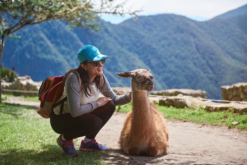 Girl traveller with lama royalty free stock photos