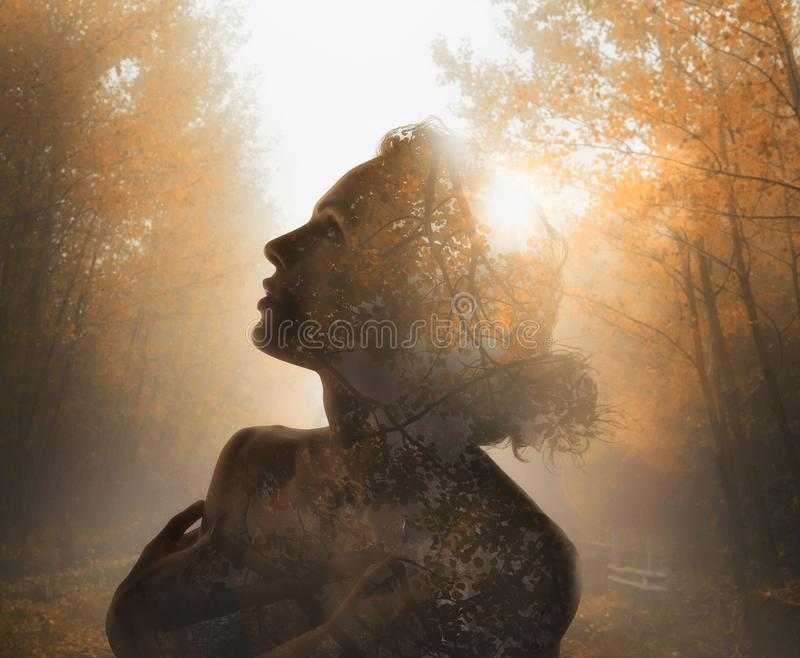 Girl with tree inside. Concept of autumn. Double exposure. Girl with tree forest inside. Concept of autumn. Double exposure stock photos