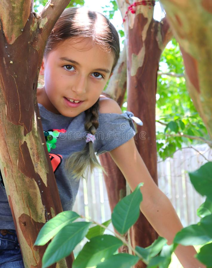 Girl Climbs Tree on Summer Day royalty free stock image