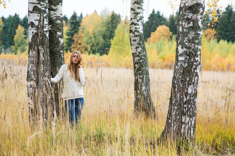 Girl among the trees in the high yellow grass stock photos