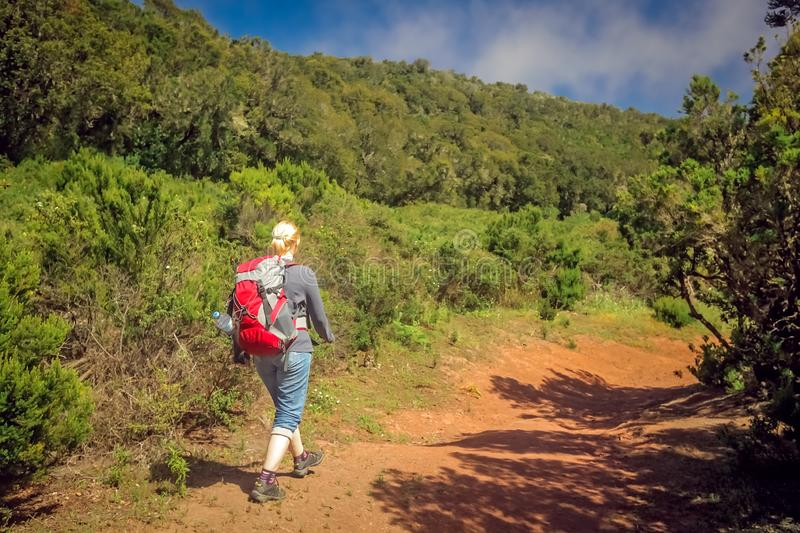 Girl trekking in Garajonay national park royalty free stock images