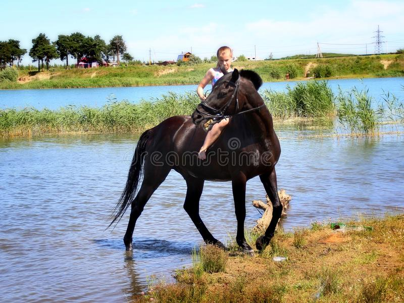 Girl tries to control the horse. Equestrian Sports Club brought horses to bathe in the lake. Russia. Moscow region. Schelkovsky district stock photo