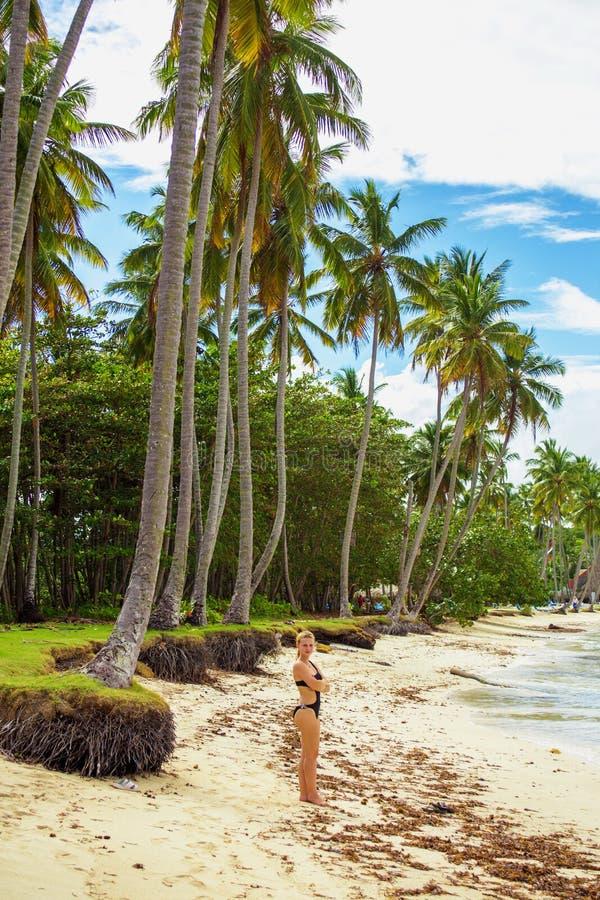 Girl on the tropical beach stock photography