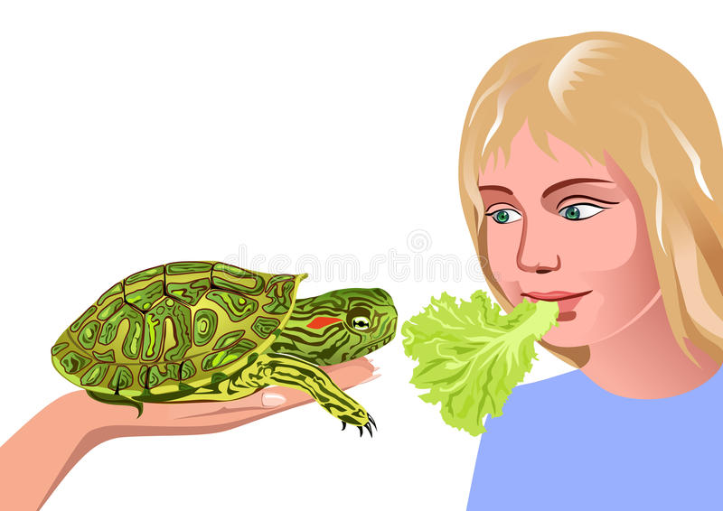 Girl and turtle. Girl feeding the turtle cabbage