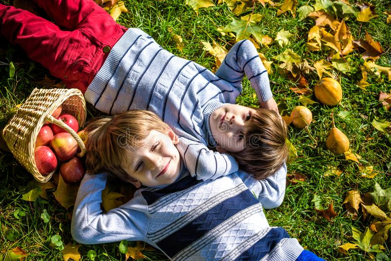 Girl and two boys lay on the grass and eat apples stock photos