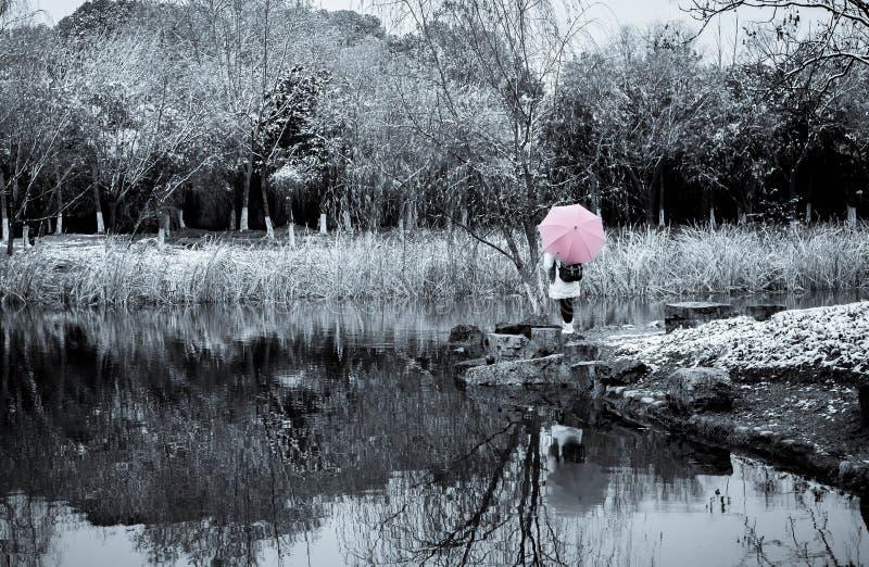 An girl with an umbrella in the snow garden stock photo