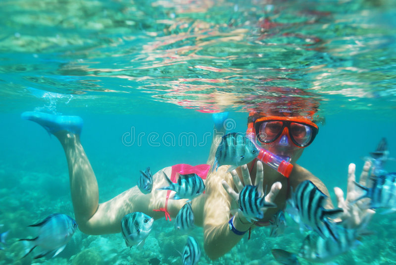Girl under water. A girl in a diving mask floats under water with fishes stock image