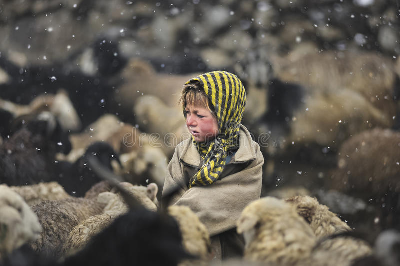 Girl from Upper Shimshal village. Girl in a snow looking for sheep to be milked before being sent to pasture from Upper Shimshal, village 5200m Gilgit, Pakistan stock photography