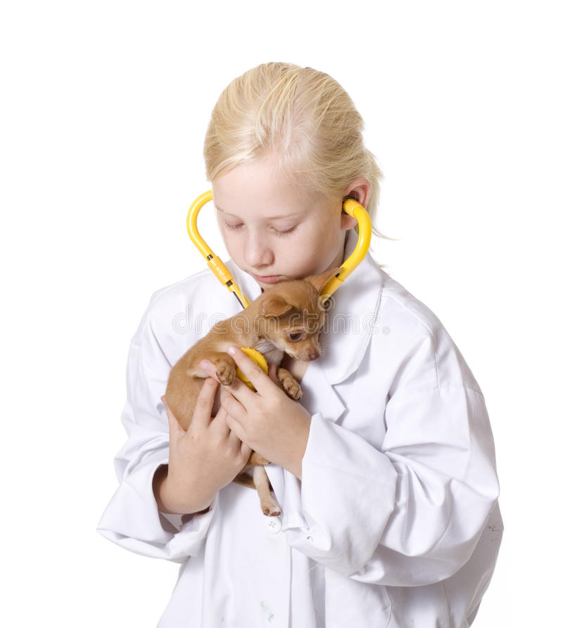 Girl Veterinarian with Puppy Using Stethoscope royalty free stock images