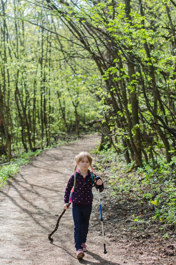 Girl walk or hike through the forest in early spring stock images