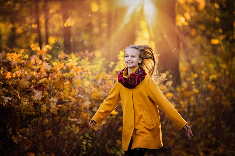 Girl walks in the autumn park royalty free stock photos