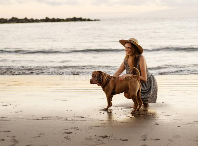 Girl walking on the beach at sunset with a dog royalty free stock image