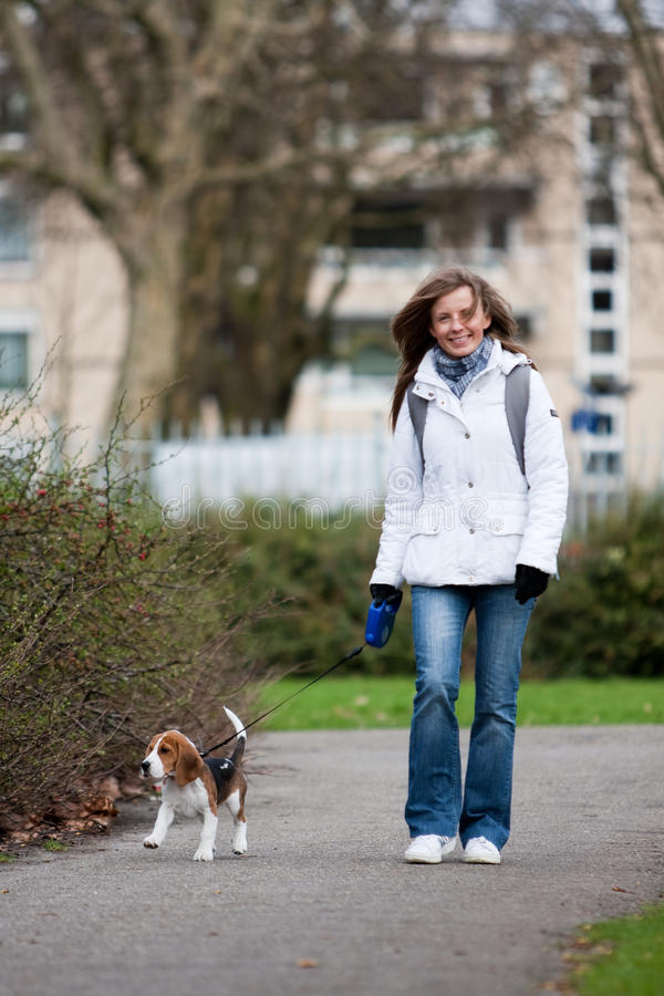 Girl walking with a dog royalty free stock image